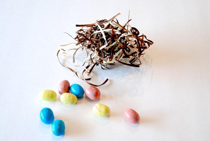egg nest2