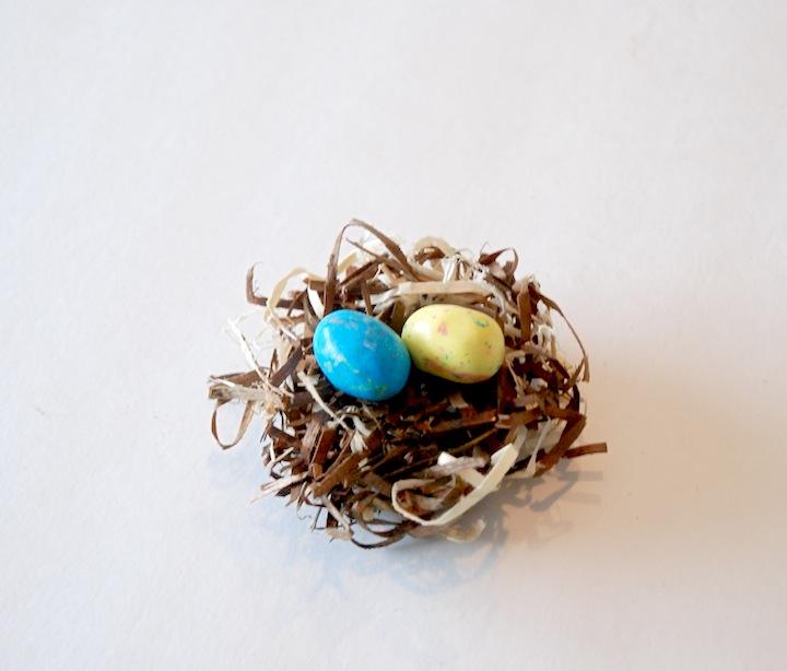 egg nest4