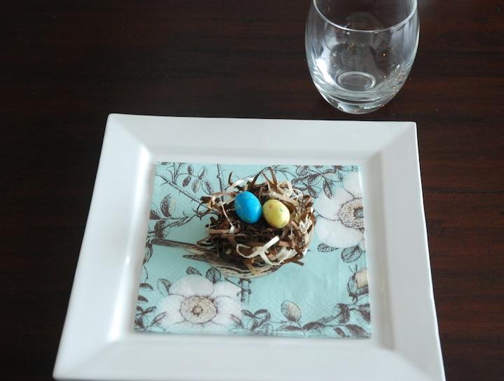 egg nest5