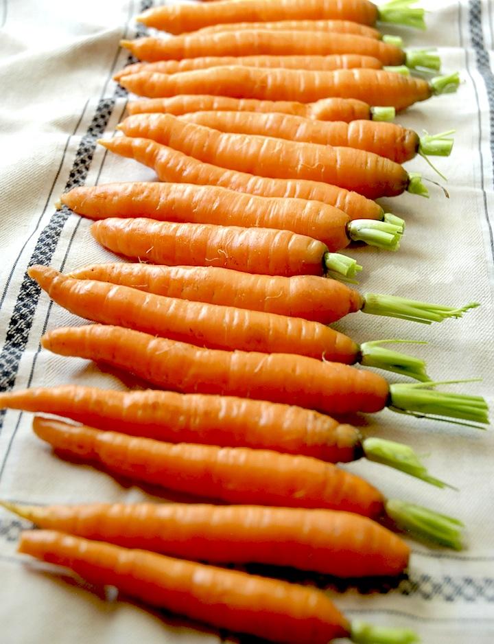 Farmhouse Carrots | Sugar Plum Sisters