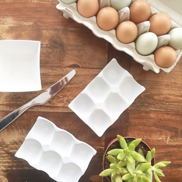 eggs succulents1