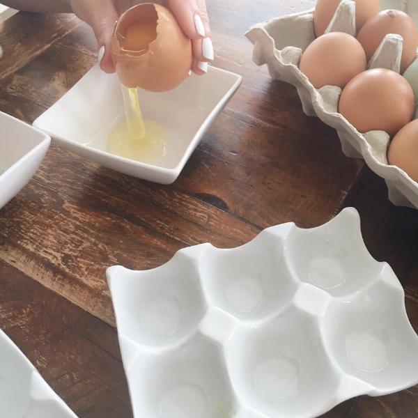 eggs succulents4